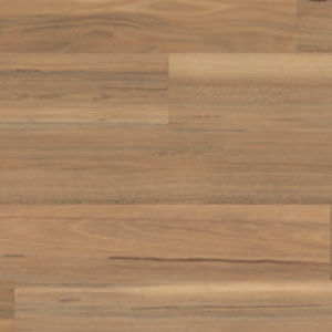 Weathered Spotted Gum